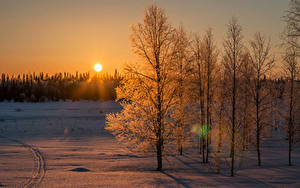 Hintergrundbilder Finnland Lappland Landschaft Winter Sonnenaufgänge und Sonnenuntergänge Schnee Sonne Bäume