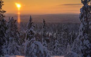 Bilder Finnland Winter Landschaftsfotografie Lappland Landschaft Fichten Schnee Sonne