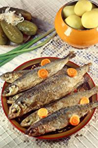 Fotos Fische - Lebensmittel Gurke Mohrrübe Teller
