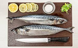 Photo Fish - Food Knife Lemons 2 Salt Cutting board Food