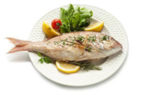 Bilder Fische - Lebensmittel Zitrone Weißer hintergrund Teller Lebensmittel