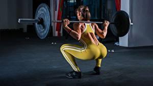 Fotos Fitness Hantelstange Rücken Gesäß Trainieren Kniebeugen Mädchens