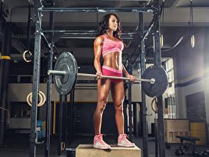 Bilder Fitness Braune Haare Trainieren Hantelstange Mädchens Sport