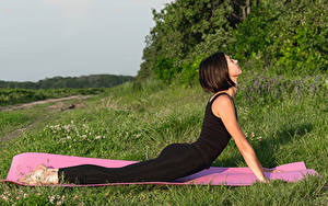 Fotos Fitness Braune Haare Trainieren Hand Yoga Unterarmstütz junge Frauen Sport