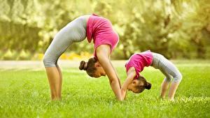 Bilder Fitness Gymnastik Gras 2 Kleine Mädchen Dehnübungen Seitlich Bokeh junge Frauen