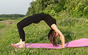 Hintergrundbilder Fitness Gymnastik Braune Haare Trainieren Uniform bridge Mädchens