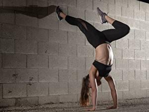 Fotos Fitness Bein Bauch Wände Mädchens
