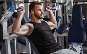 Bilder Fitness Mann Hand Muskeln Unterhemd Sport