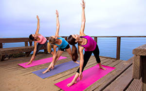 Fotos Fitness Drei 3 Körperliche Aktivität Hand Bein Mädchens Sport