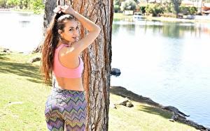 Fotos Fitness Baumstamm Braune Haare Rücken Starren Schön Mädchens