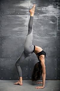 Hintergrundbilder Fitness Wände Braune Haare Körperliche Aktivität Hand Bein Dehnübungen junge Frauen Sport