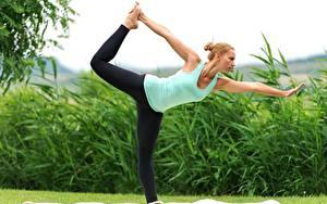 Bilder Fitness Yoga Trainieren Dehnübungen Blond Mädchen Hand Bein Gras junge Frauen