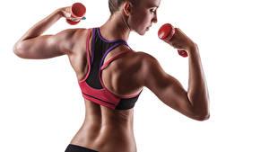 Hintergrundbilder Fitness Hantel Rücken dumbbells sportswear Sport Mädchens