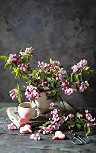 Hintergrundbilder Blühende Bäume Kekse Stillleben Bretter Ast Tasse Herz das Essen Blumen