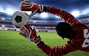 Fotos Fußball Torwart Ball Hand Handschuh Sprung sportliches