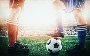 Bilder Fußball Bein Ball Sportschuhe Sport