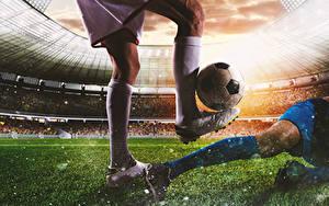 Fotos Fußball Mann Bein Ball Sportschuhe Sport