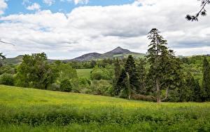 Hintergrundbilder Wälder Landschaftsfotografie Irland Gras Bäume County Wicklow, province of Leinster