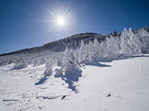Fotos Wälder Winter Gebirge Schnee Sonne Lichtstrahl