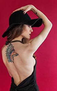 Bilder Füchse Farbigen hintergrund Model Posiert Hand Tätowierung Der Hut Braunhaarige Rücken Indianer
