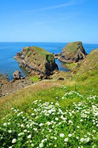 Hintergrundbilder Frankreich Küste Gras Felsen Brittany Natur