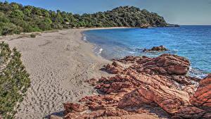 Hintergrundbilder Frankreich Küste Stein Sand Felsen Ast Strand Corsica