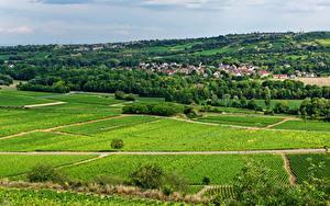 Bilder Frankreich Haus Felder Dorf Santenay, Bourgogne Natur