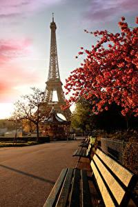 Bilder Frankreich Paris Eiffelturm Japanische Kirschblüte