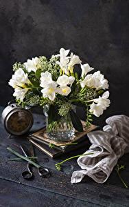 Papel de Parede Desktop Frésia Relógio Vaso Branco flor