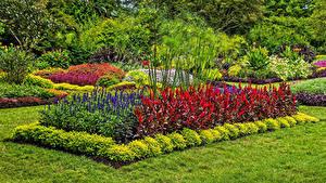 Hintergrundbilder Garten USA Design Strauch Rasen Longwood Gardens