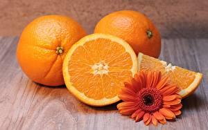 Hintergrundbilder Gerbera Orange Frucht Orange Stück das Essen