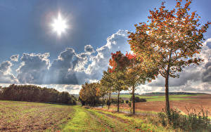 Picture Germany Autumn Fields Sky Trees Sun Illerich Nature