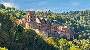 デスクトップの壁紙、、ドイツ、秋、森林、城、要塞、廃墟、Heidelberg castle, Heidelberg、