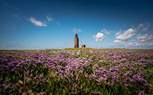 Hintergrundbilder Deutschland Küste Leuchtturm Himmel Langeness