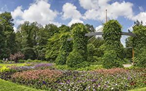 Fotos Deutschland Garten Petunien Design Strauch Botanischer Garten Augsburg Natur