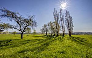 Hintergrundbilder Deutschland Grünland Himmel Gras Bäume Sonne Beltheim