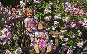 Picture Germany Park Rose Bouquets Hydrangea Doll Little girls 2 Bench Grugapark Essen Nature