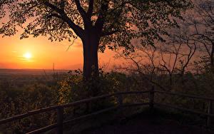 Bilder Deutschland Sonnenaufgänge und Sonnenuntergänge Bäume Zaun Sonne Siebengebirge
