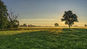 Hintergrundbilder Deutschland Sonnenaufgänge und Sonnenuntergänge Felder Bayern Bäume Gras Nebel Augsburg