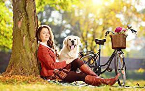 Hintergrundbilder Golden Retriever Hunde Unscharfer Hintergrund Gras Fahrräder Braunhaarige Sitzen Bein Stiefel junge frau