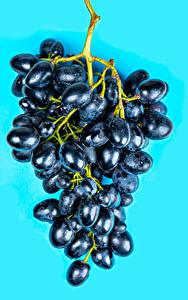 Tapety na pulpit Winogrona Z bliska Kolorowe tło żywność