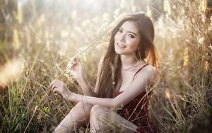 Bilder Gras Braunhaarige Sitzen Blick Lächeln Hand Mädchens