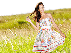 Photo Grass Brunette girl Pose Frock Hands Glance young woman