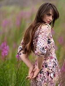 Fotos Grünland Unscharfer Hintergrund Kleid Hand Blick Braune Haare Cariad Celis