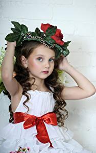 Hintergrundbilder Grauer Hintergrund Kleine Mädchen Model Braune Haare Hand Schleife Blick Schön Posiert kind