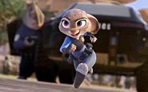 Fotos Hasen Disney Lauf Zootopia Animationsfilm