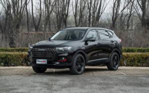 Fotos Haval Crossover Schwarz Metallisch Chinesisches H6 GT, 2021 Autos