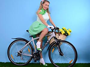 Fotos Hayley Marie Coppin Wand Fahrräder Lächeln Blondine Sitzt Weidenkorb Mädchens