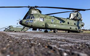 Hintergrundbilder Hubschrauber Royal Netherlands Air Force, Boeing CH-47D Chinook