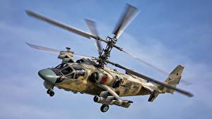 Desktop hintergrundbilder Hubschrauber Russischer Flug ka-52 alligator Luftfahrt